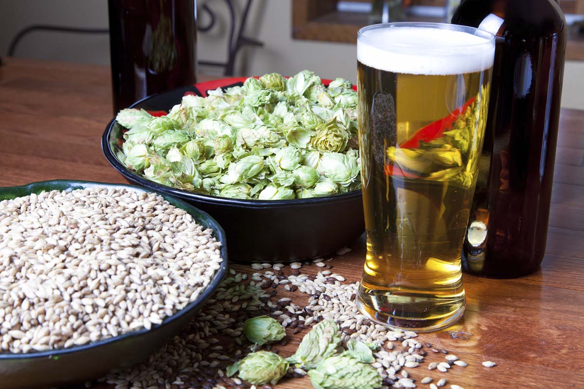 How to Create a Home Brewing Recipe