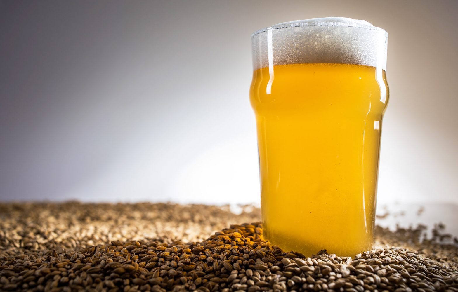 Everything You Need To Know About All Grain Brewing
